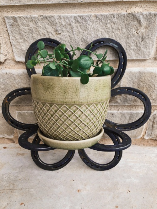 Plant shelf project made from welded horseshoes.